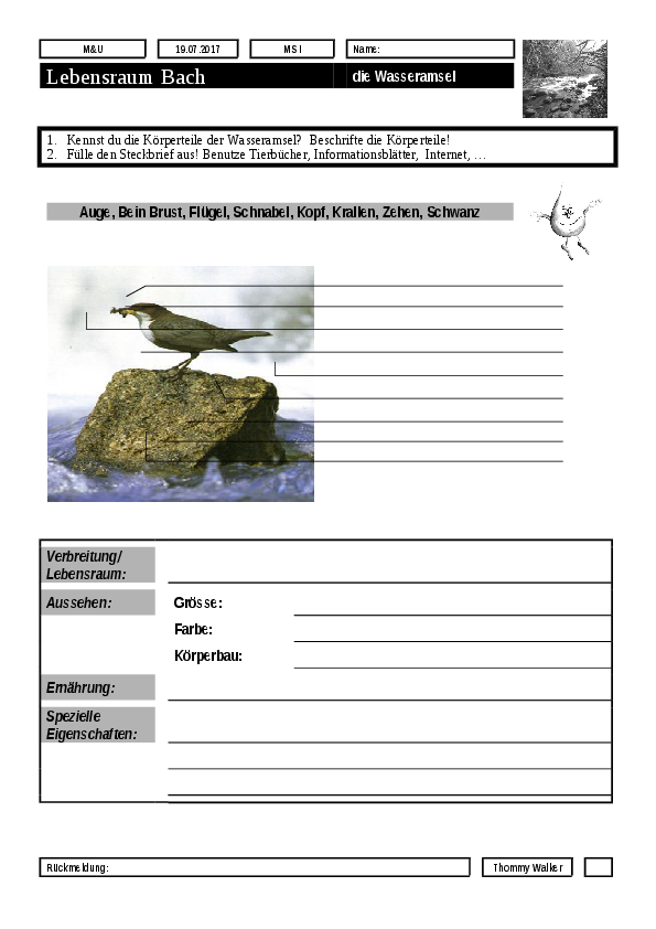 Charmant Rock Zyklus Vorlage Galerie - Beispiel Wiederaufnahme ...