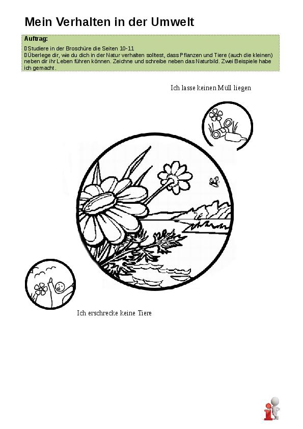 Nett Arbeitsblatt Auf Anpassungen Bei Pflanzen Und Tieren Ideen ...