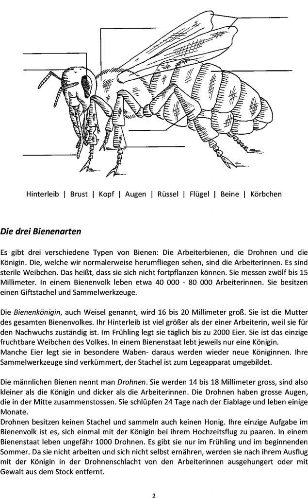 Großartig Nahrungskette Arbeitsblatt Pdf Bilder - Super Lehrer ...