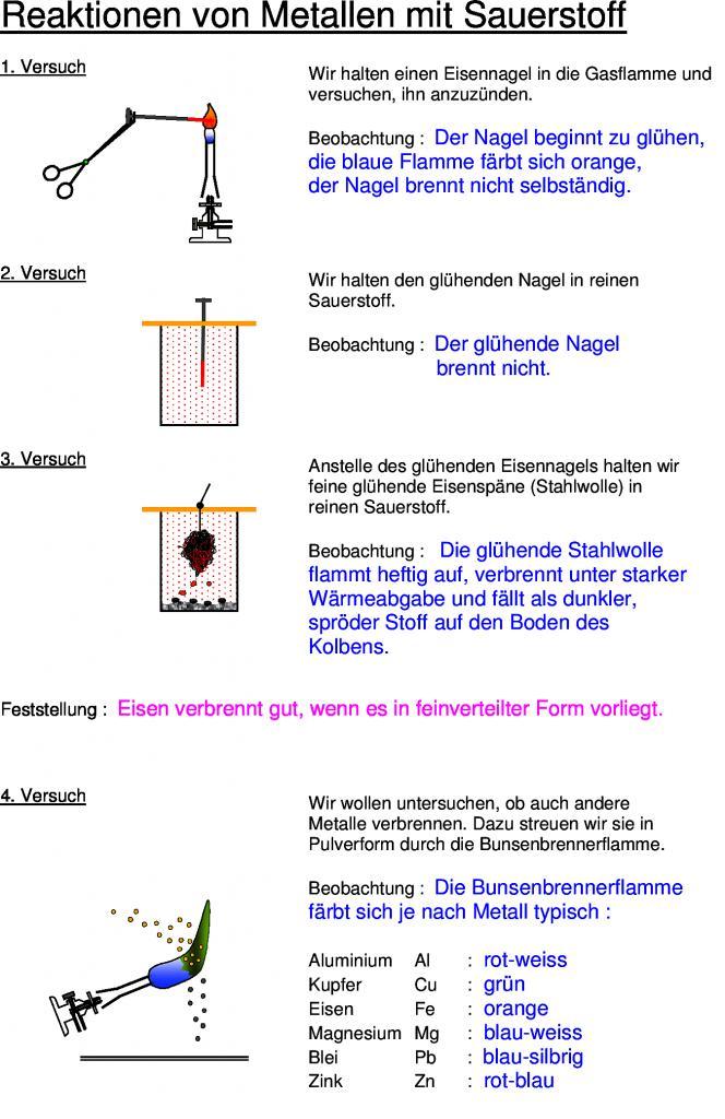 Ungewöhnlich Mitose Färbung Arbeitsblatt Bilder - Arbeitsblatt ...
