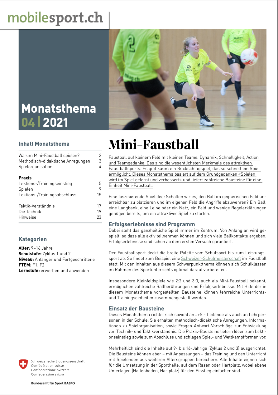 Preview image for LOM object Mini-Faustball - mobilesport Monatsthema