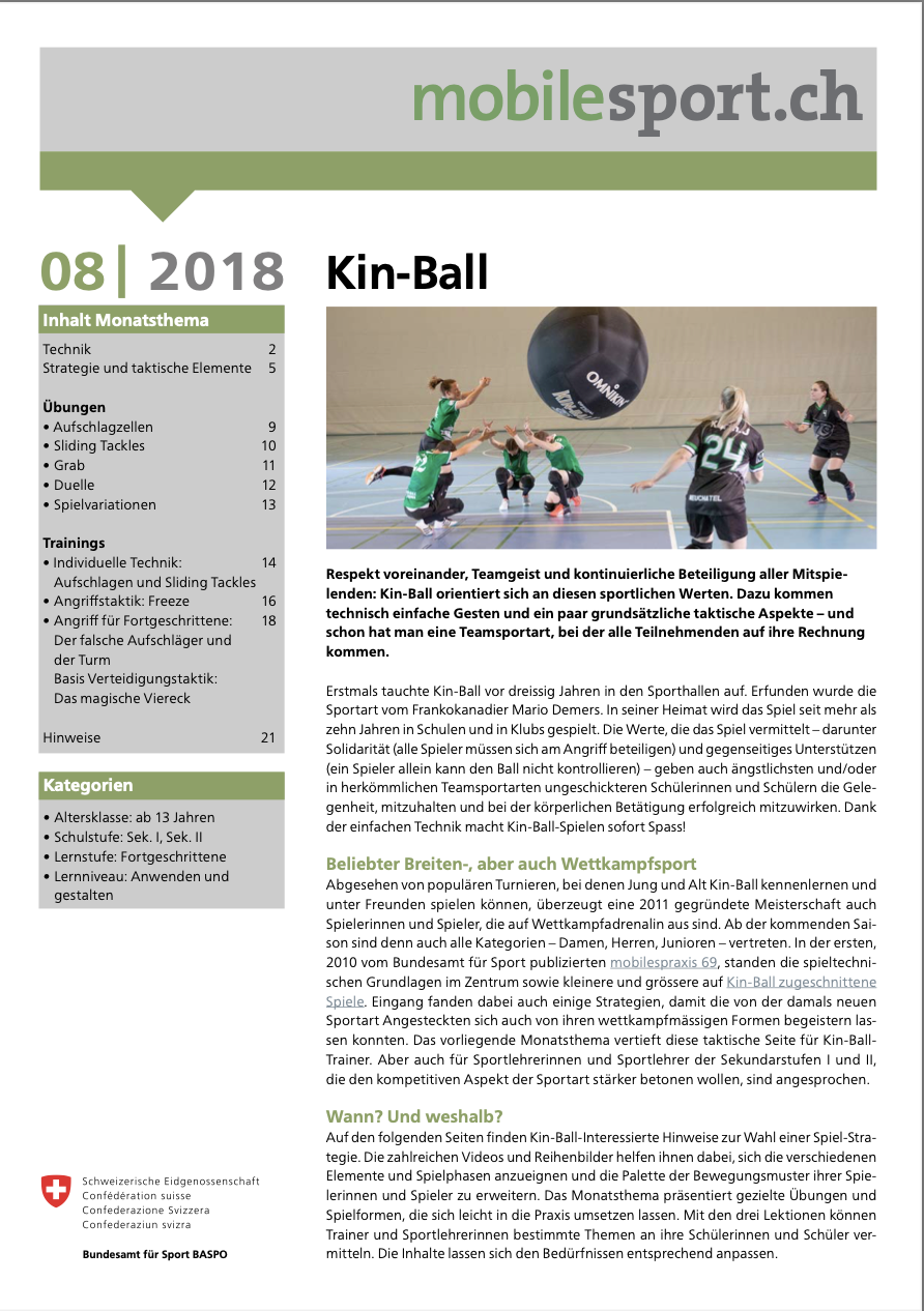 Preview image for LOM object Kin-Ball - mobilesport Monatsthema