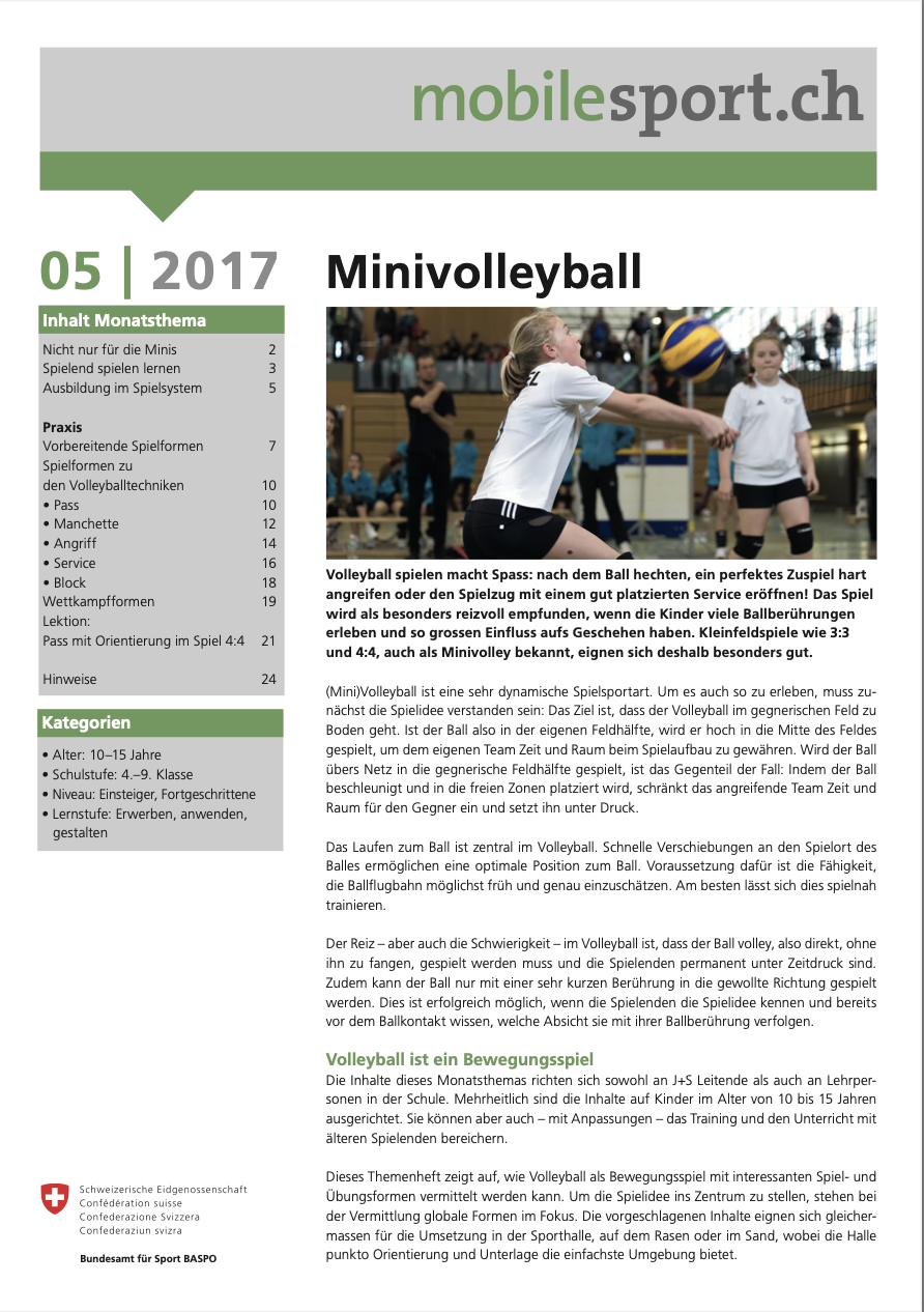 Preview image for LOM object Minivolleyball - mobilesport Monatsthema