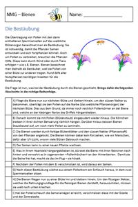 Preview image for LOM object Bienen - Arbeitsblätter