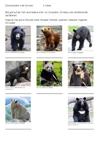 Preview image for LOM object Grossraubtiere der Schweiz im Tierpark Goldau