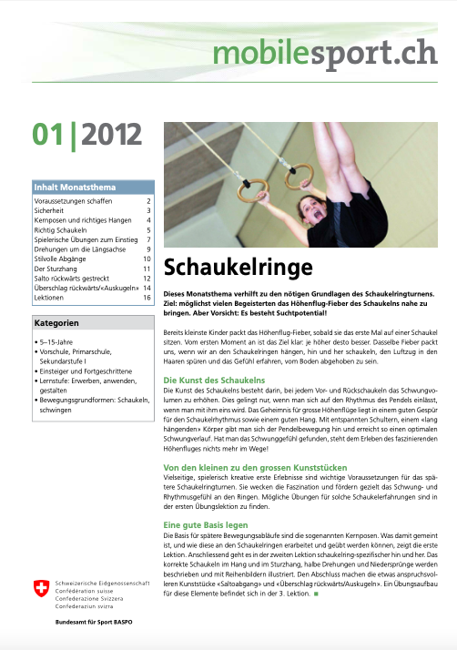 Preview image for LOM object Schaukelringe - mobilesport Monatsthema