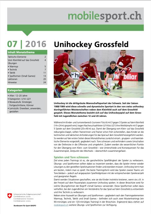 Preview image for LOM object Unihockey Grossfeld - mobilesport Monatsthema