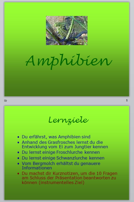 Preview image for LOM object Amphibien