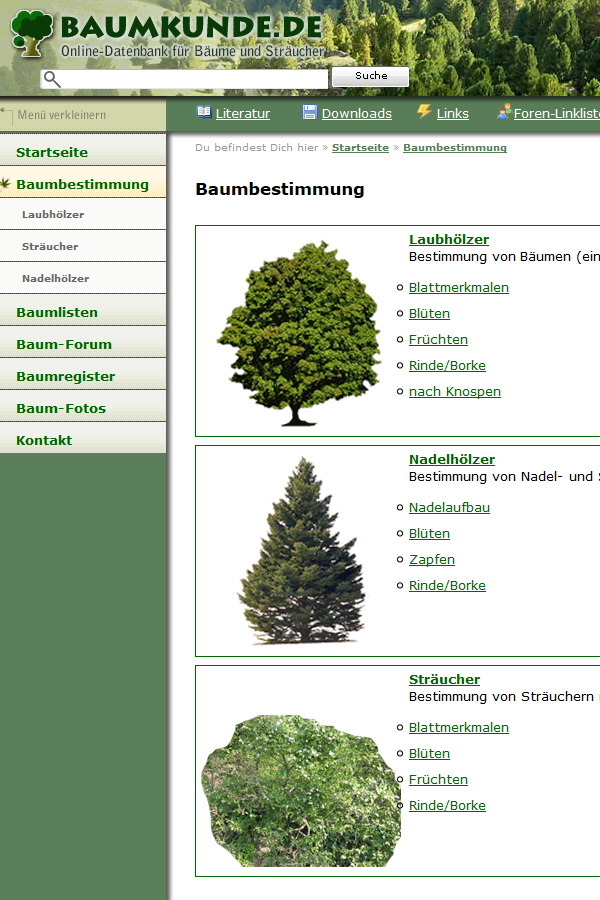 Preview image for LOM object Baumbestimmung