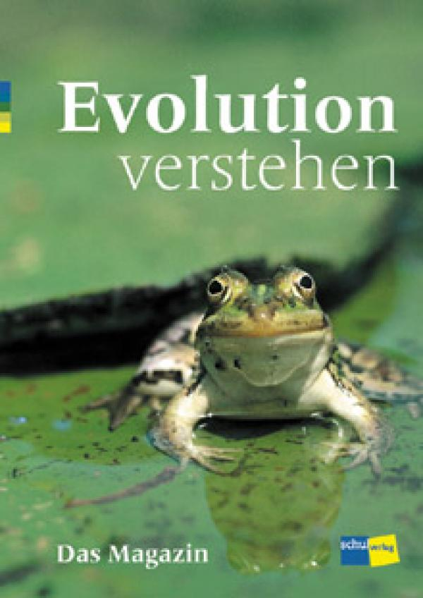 Preview image for LOM object Evolution verstehen