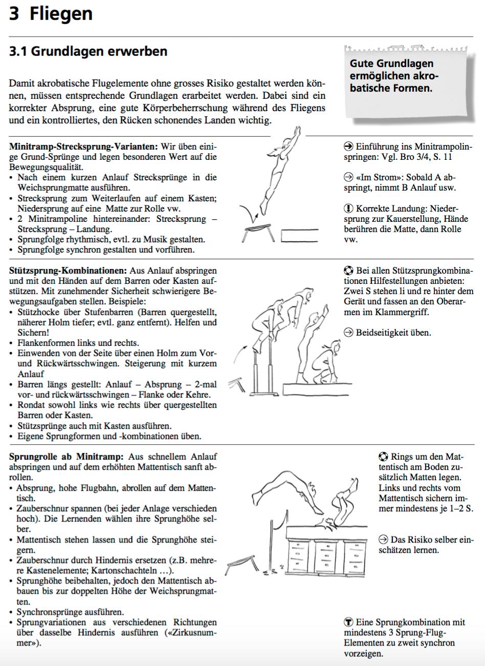 Preview image for LOM object Fliegen - Grundlagen Absprung, Flug, Landung