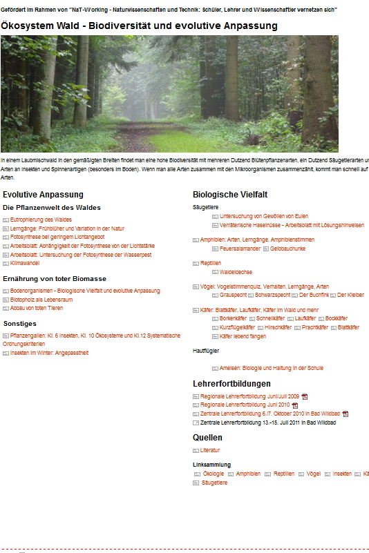 Preview image for LOM object Biodiversität im Wald
