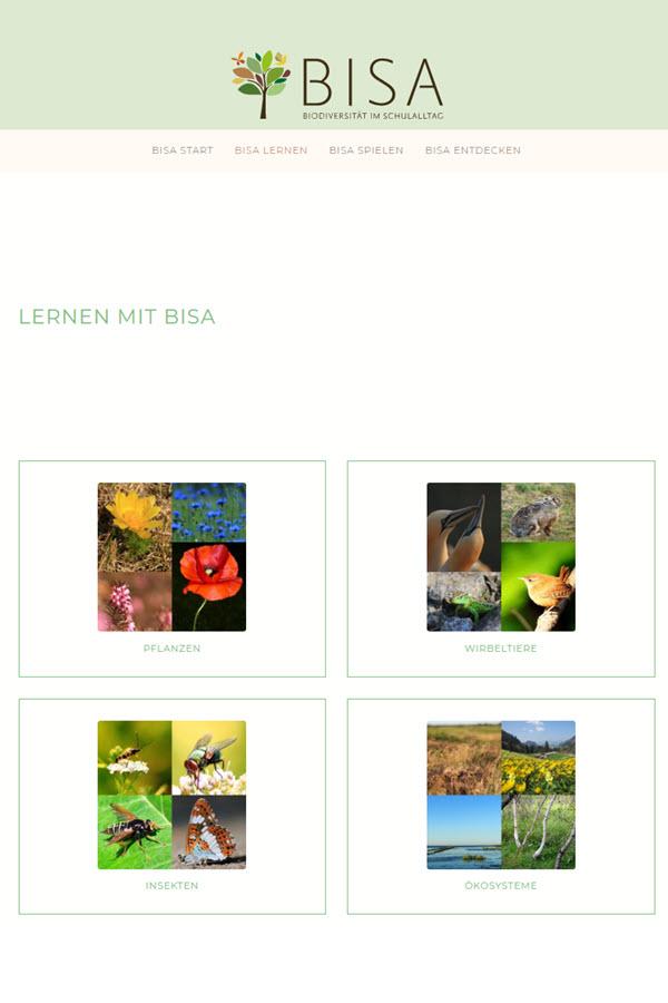 Preview image for LOM object BISA Bioversität im Schulalltag