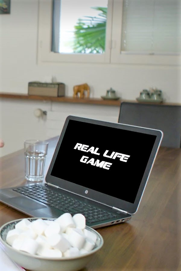 Preview image for LOM object Nachdänker: real life : game