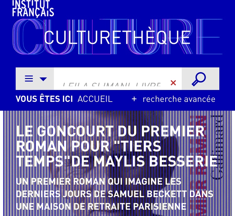 Preview image for LOM object L'institut français: Culturethèque