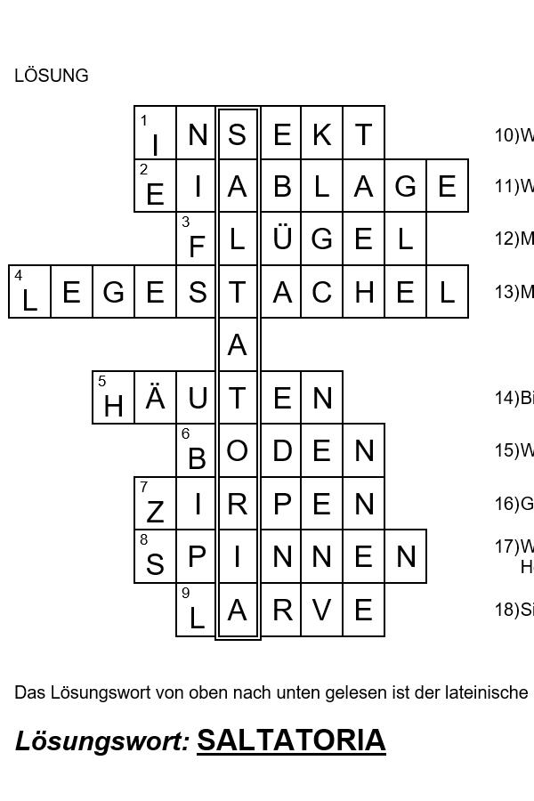 Preview image for LOM object Kreuzworträtsel Heuschrecken