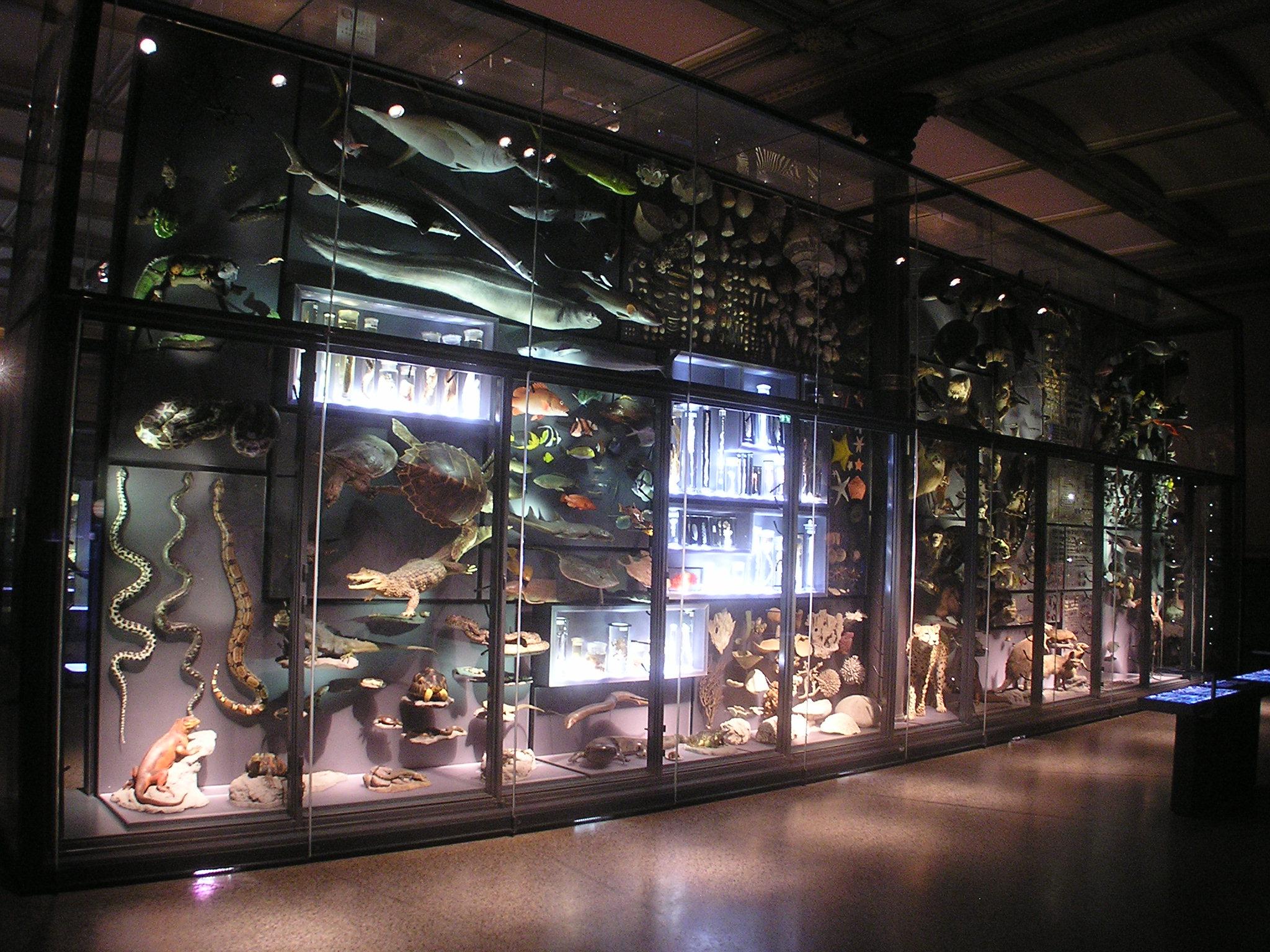 Preview image for LOM object Artenvielfalt und Lebensräume