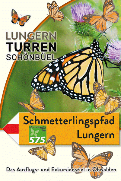 Preview image for LOM object Schmetterlingspfad Lungern