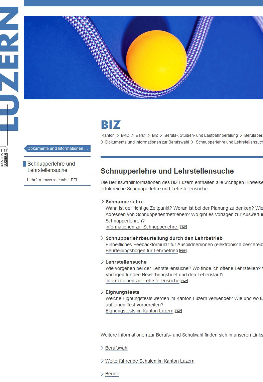 Preview image for LOM object Schnupperlehren und Lehrstellen im Kanton Luzern