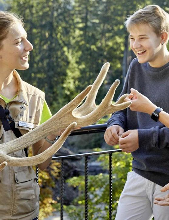 Preview image for LOM object Rückkehr auf leisen Pfoten – Führung im Natur- und Tierpark Goldau