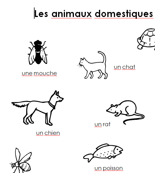 Preview image for LOM object Merkblatt les animaux domestiques