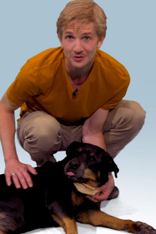 Preview image for LOM object Wie kam der Hund zum Menschen?